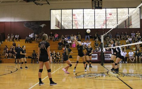 Setting Volleyballs and Good Examples